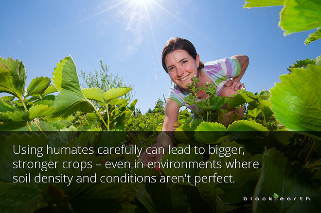 agricultural benefits humic material