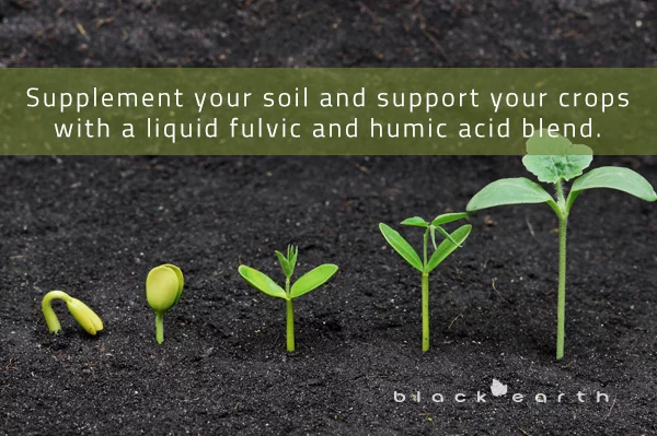 demonstrating the effects liquid fulvic and humic acid blends have on growing plants