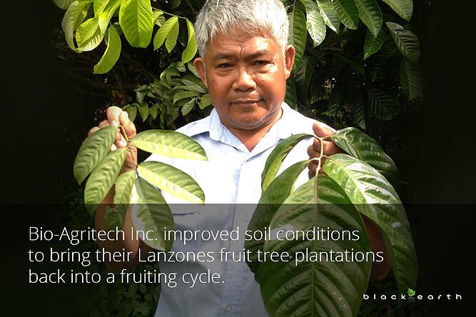 farmer holding lanzones leaves