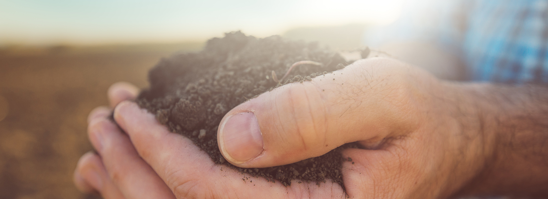 Farmer holding soil with hands
